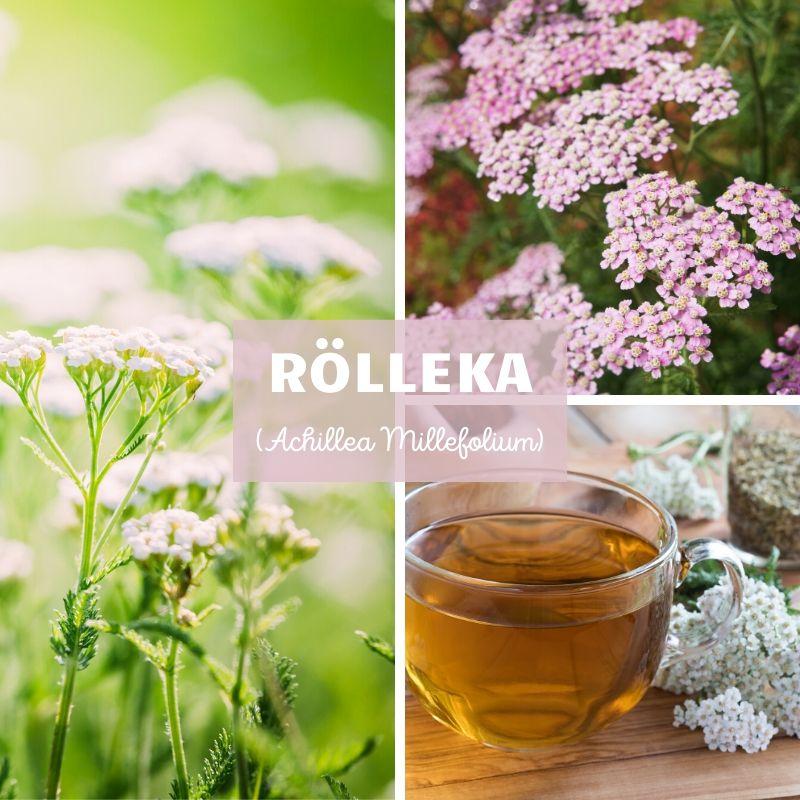 Rölleka-Örter-Scandinavian Herbs